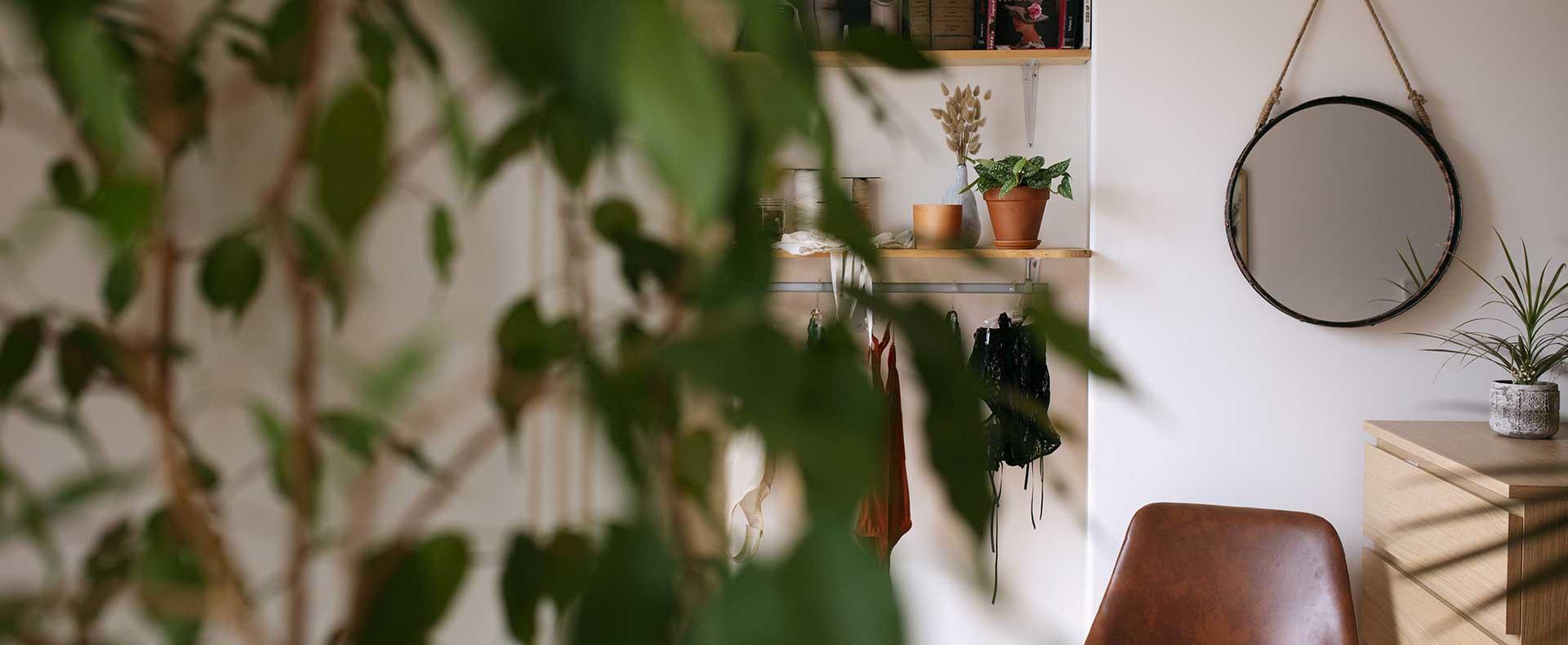 Lingerie-suspendu-etageres-plantes-atelier
